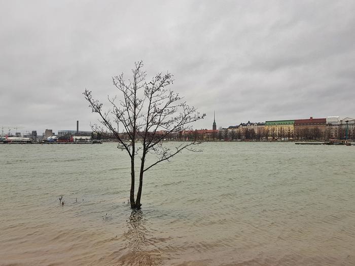 Merivesi oli korkealla Helsingin edustalla Uunisaaressa Ciara-myrskyn aikana helmikuun alussa 2020.