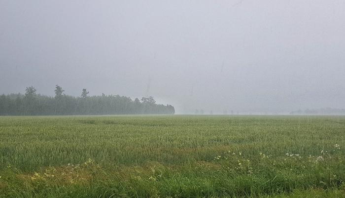 Rankkoja saderyöppyjä on luvassa varsinkin heinäkuun alkupuolella.