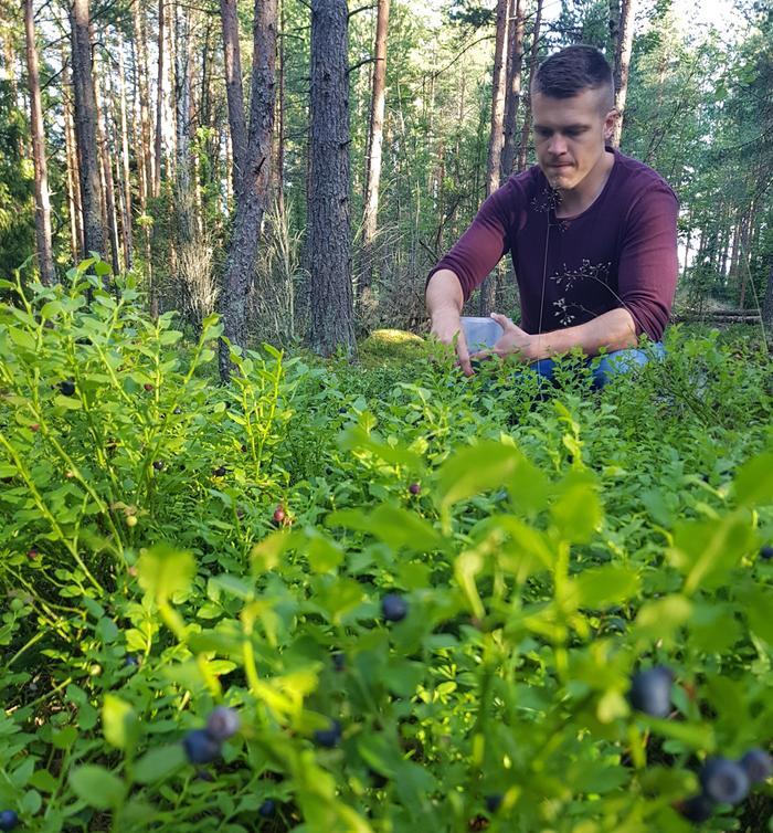 Forecan ja MTV Uutisten meteorologi Markus Mäntykannas marjametsässä.