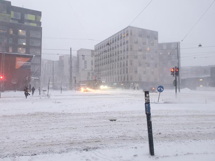 Lumi kinostui kaduille Helsingissä Toini-pyryssä.