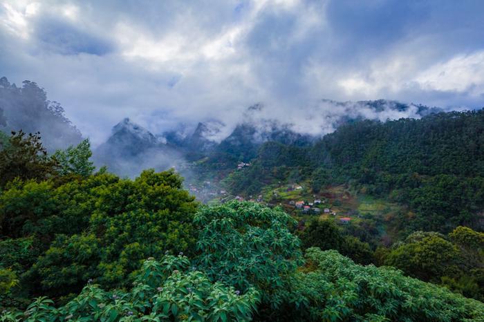 Pilvien tasolla Madeiran vuorilla.