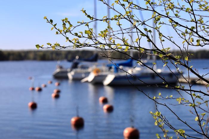 Kevättä venesatamassa Näsijärvellä.