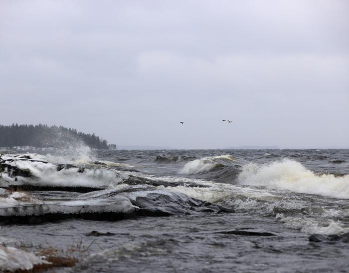 Aaltoja Toini-talvimyrskyn aikana Näsijärvellä Tampereella.