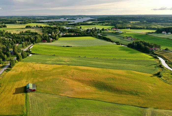 Kesämaisemaa Hämeenkyrössä elokuussa 2020.