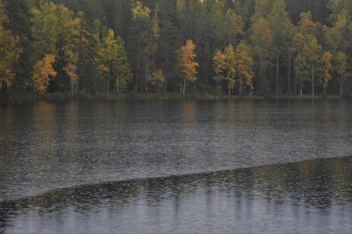 Vesisadetta järvellä.