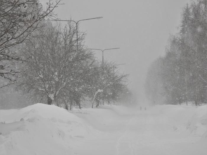 Lumisadetta ja korkeita kinoksia Jyväskylässä.