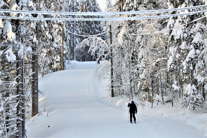 Hiihtäjä lumisissa maisemissa Jyväskylässä.