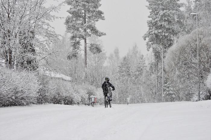 Lumisateita Jyväskylässä.