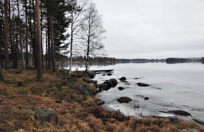 Jyväskylässä oli ajoittain lumetonta tammikuussa 2020.