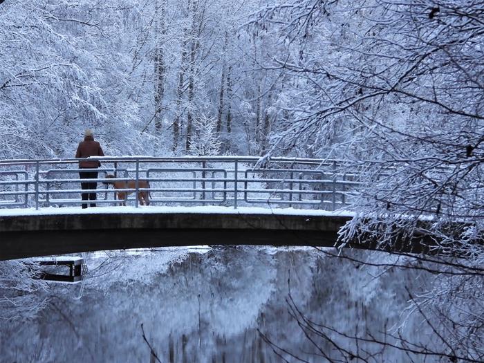 Lunta Jyväskylässä tammikuun alussa.