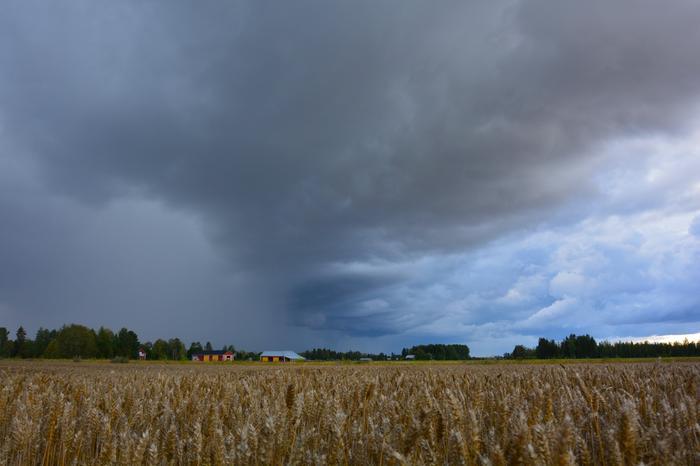Synkkä taivas Isossakyrössä elokuussa 2021.