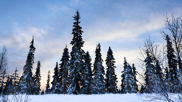 Kaunis talvi-ilta