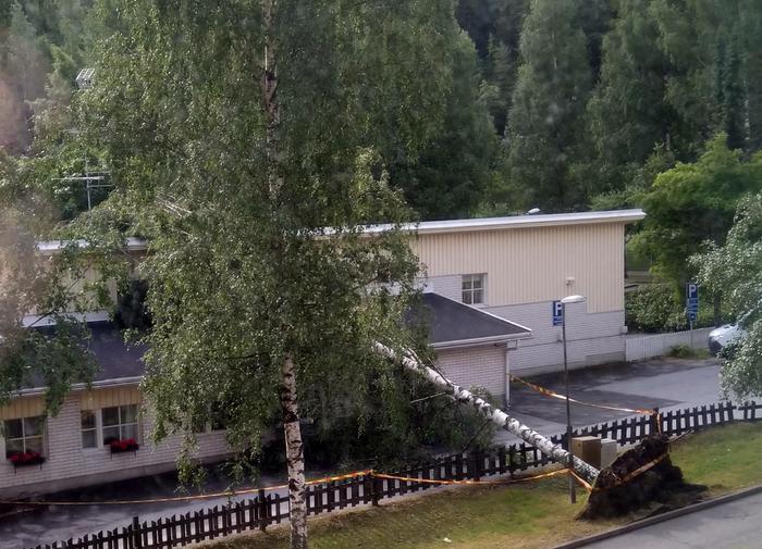 Puu kaatui Saarikellon päiväkodin päälle Kuopiossa Päivö-myräkässä 30. kesäkuuta 2020.