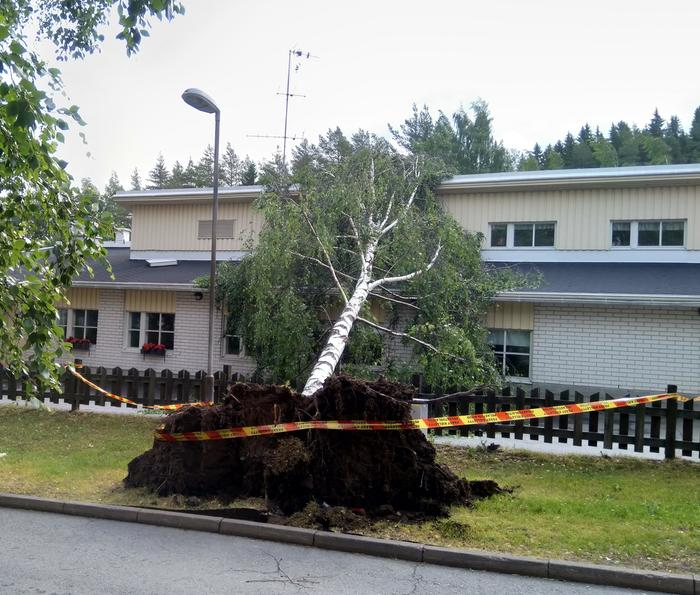 Päivö-myräkkä kaatoi puun Saarikellon päiväkodin päälle Kuopiossa 30. kesäkuuta 2020.
