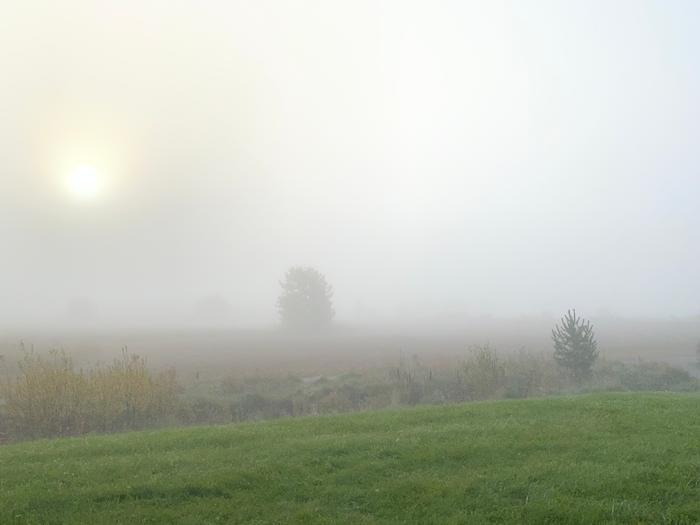 Syyskuisen aamun sumua Tuusulassa.