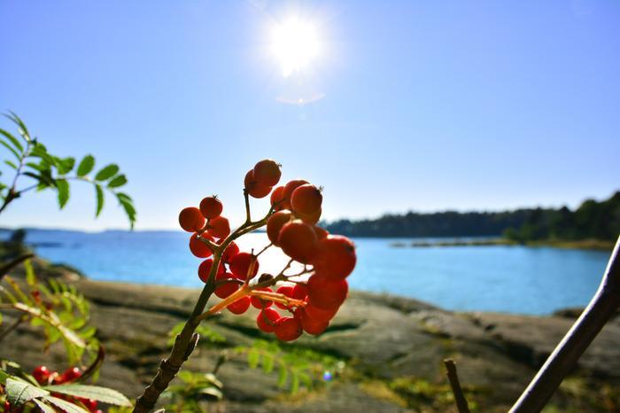 Kesäsäiden paluu termisen syksyn alettua syyskuussa.