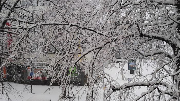 Lumisade valkaisi maiseman.