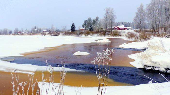 Kyrönjoen jäitä ja virtausta helmikuussa 2021.