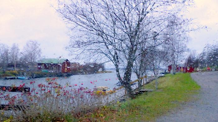 Sateista ja harmaata marraskuun säätä Vaasassa.