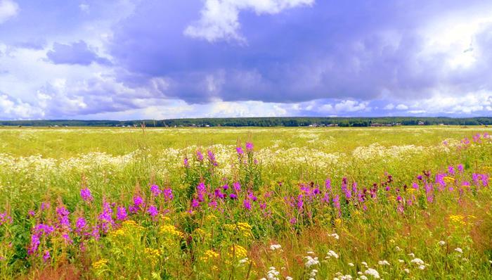 Pilviä ja pientareen kukkaparatiisi.