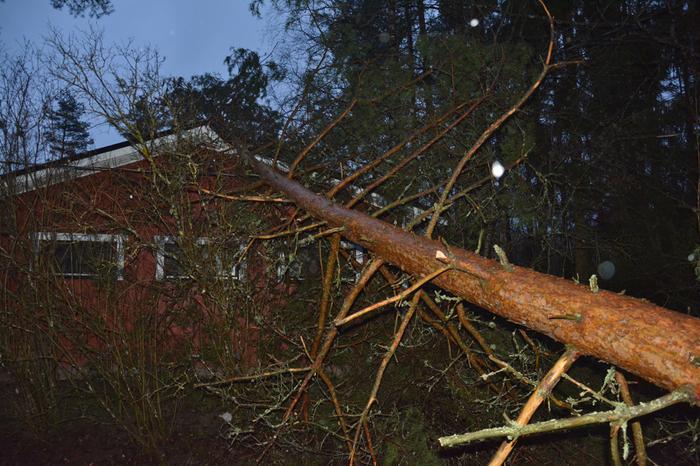 Liisa-myrsky teki tuhoja Pohjanmaalla.