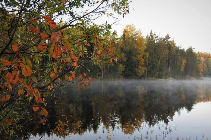 Syyskuussa ruska alkaa jo paikoin ja viileiden öiden jälkeen ilmassa voi olla sumua tai utua.