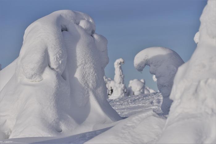 Lunta Riisitunturilla helmikuussa 2020.
