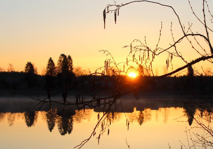 Kuulas keväinen auringonnousu.