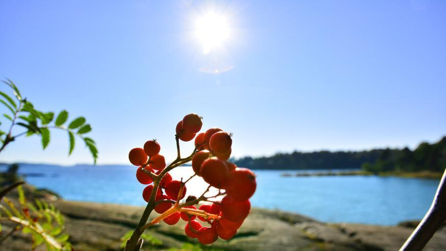 Kesäsää saapuu Suomeen ensi viikolla