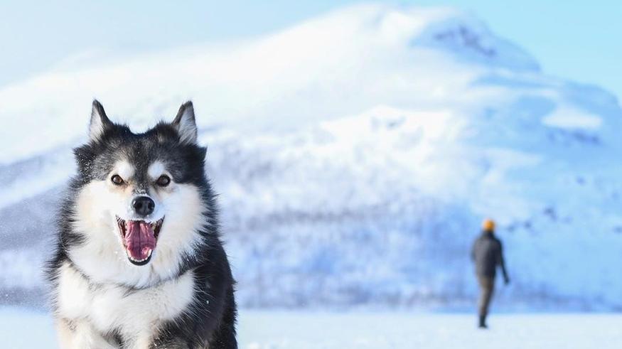 Katso ihastuttavat talvikuvat: Suomessa on vielä neljä paikkakuntaa, missä lunta on yli 1,2 metriä!