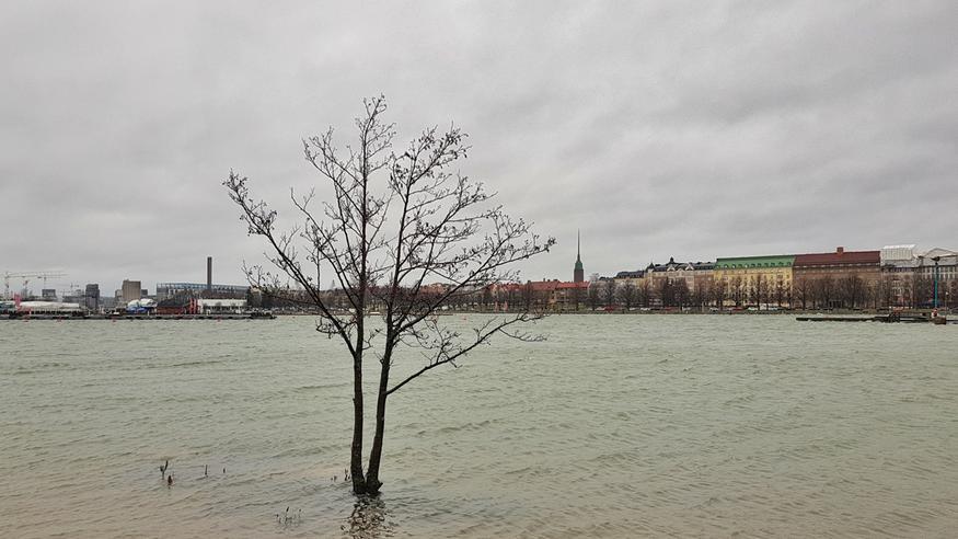 Ilmastopaneelin raportti: Ilmastonmuutoksen vaikutukset näkyvät Suomessa jo nyt – muun muassa tulviin varauduttava entistä paremmin