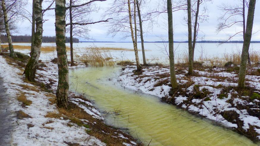 Tuntiennuste Lahti