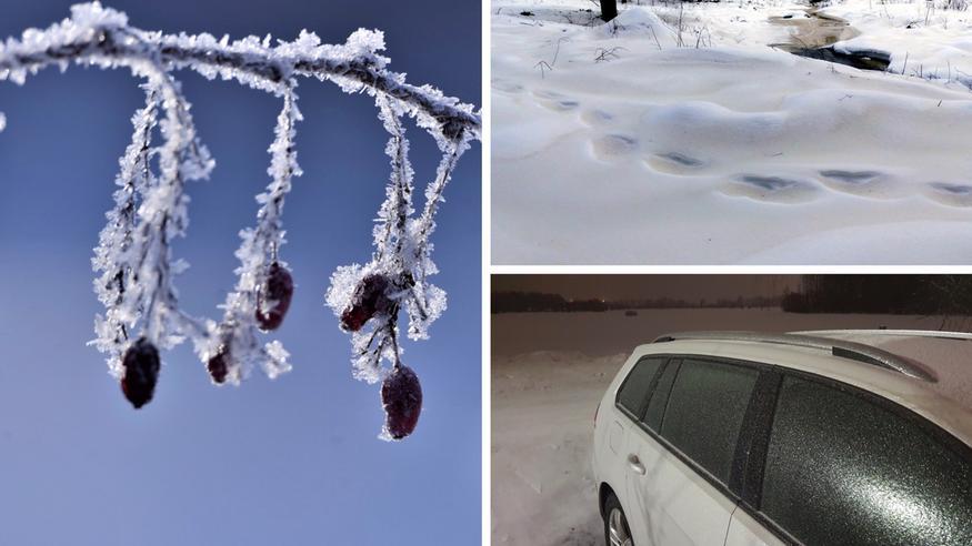 Talvi oli Suomessa tavanomaista leudompi, helmikuu tavanomaista kylmempi – nämä asiat hämmästyttivät säässä meillä ja maailmalla