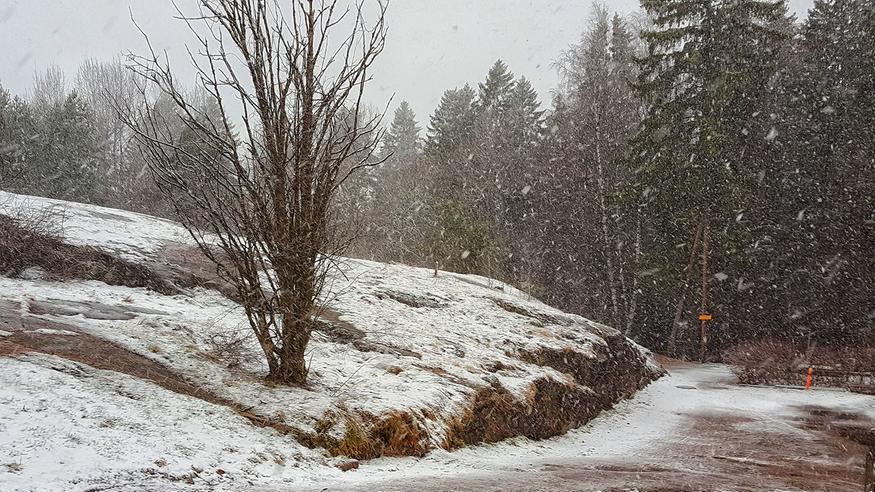 Säässä käännös: Pohjoiseen jopa 10–20 senttiä lunta – ensi viikon alussa kylmenee edelleen