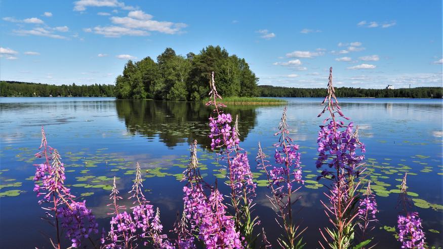 Kuukausiennuste moneen makuun: Viileämpää sekä lempeämpää kesäsäätä suosivilla hyvät ajat edessä – loppukuusta helpotusta myös hellehimoon?
