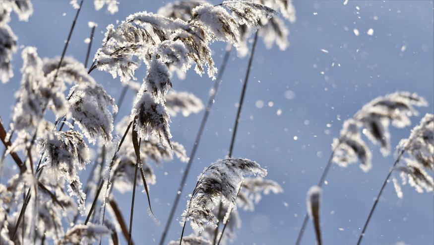 """Maaliskuun kuukausiennusteessa jäätävä käänne: Lämpötilat romahtavat – """"Talvi ei ole vielä väistynyt"""""""