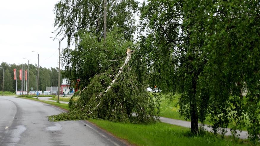 Vieno-myrsky on katkonut sähköt yli 60000 taloudelta – näin mytäkkä etenee: