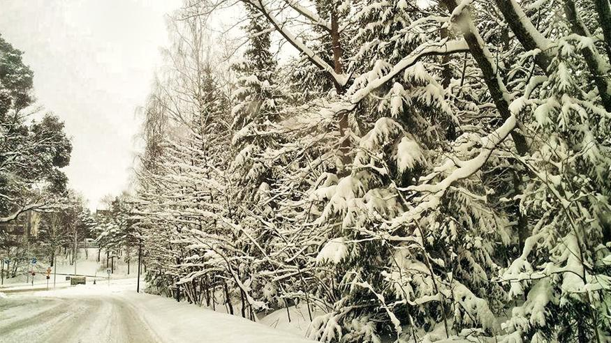 Tulevaisuuden talvina lunta voi rysähtää kerralla yhä enemmän: