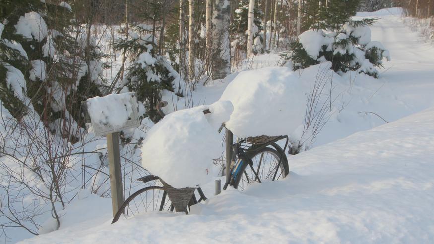 Helmikuun viimeinen viikko alkaa – Suomeen sekä lumipyryä että lauhaa