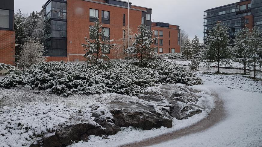 Salamatutka Turku