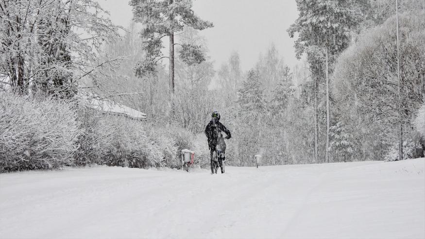Lumisateet pyörivät Suomen päällä loppuviikolla – pakkaset palaavat koko maahan! Katso yli sadan paikkakunnan ennuste