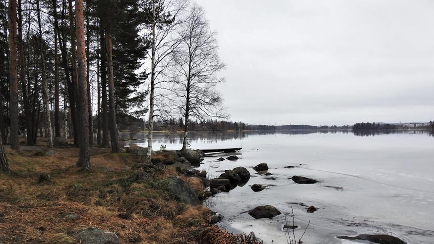 Sadetutka Seinäjoki