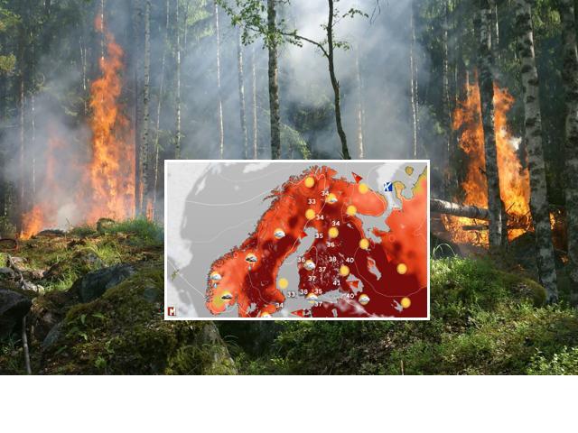 Ilmastonmuutos lisää tukalien helleaaltojen todennäköisyyttä Suomessa. Kuuman ja kuivan sään kääntöpuolena metsäpalojen riski kasvaa.